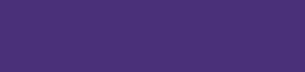 Penguicon logo